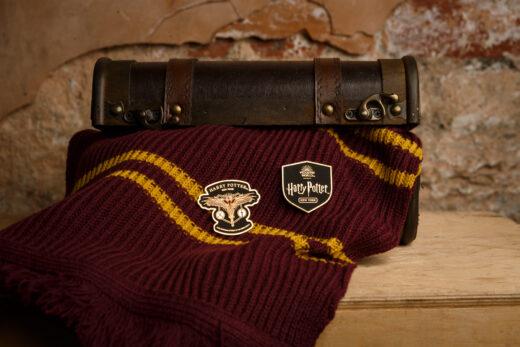 Harry Potter New York pins